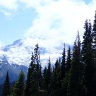 Mt Rainier Sunrise Point